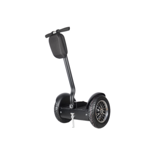 Segway Cruiser Road ZT-42