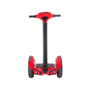 Segway Cruiser City Road ZT-41